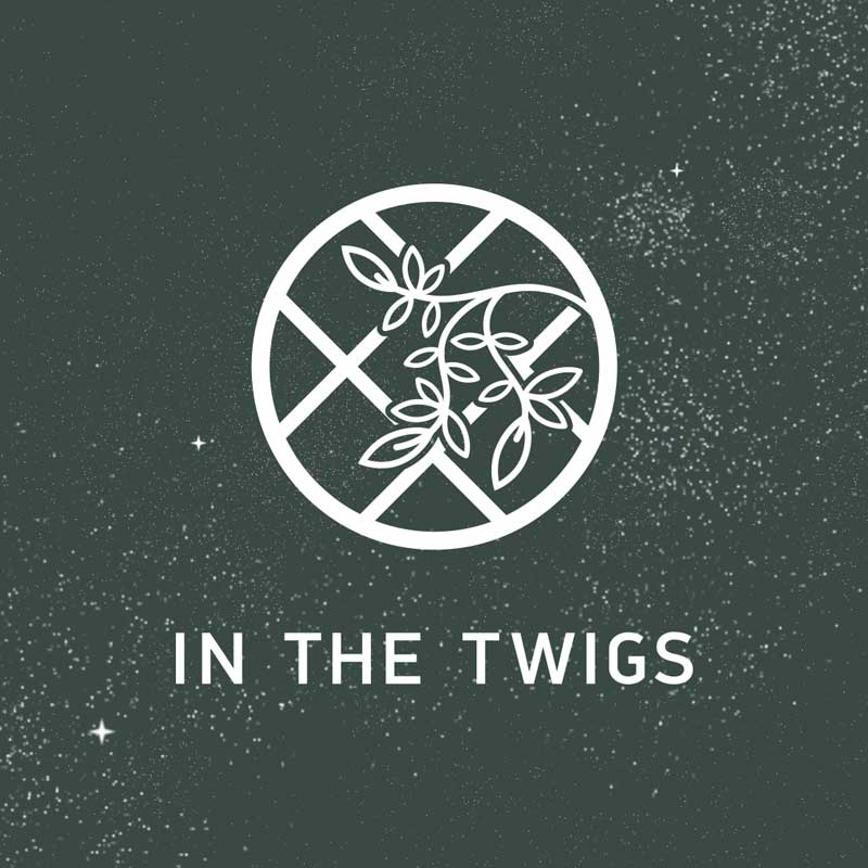 audio production by in the twigs